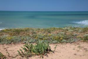 Location saisonniere Bretignolles sur mer